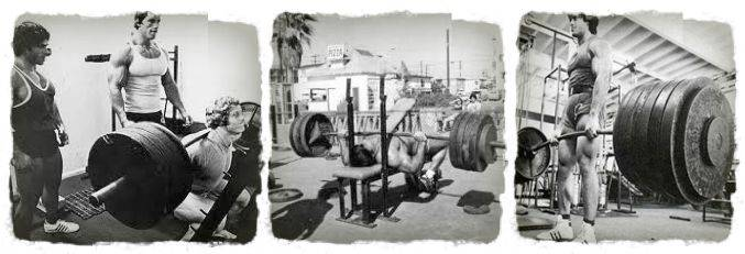 squat bench deadlift