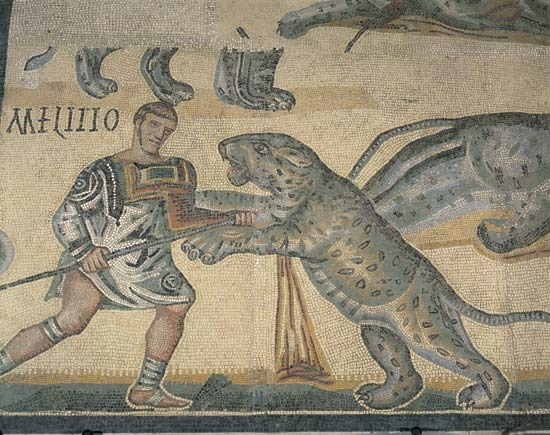 roman gladiator wild animal fight