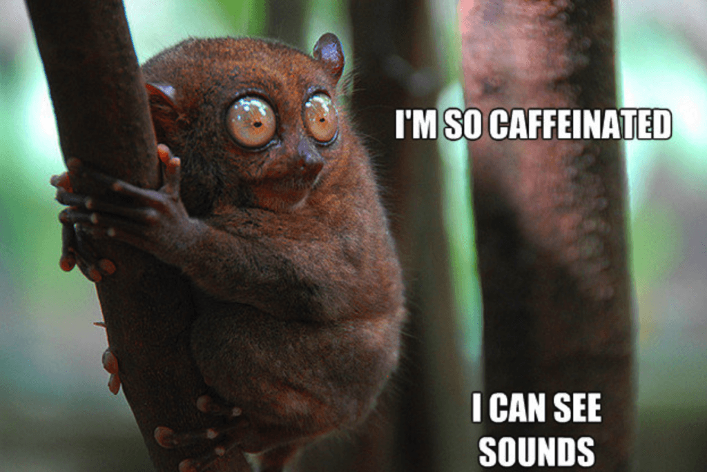 i'm so caffeinated i can see sounds