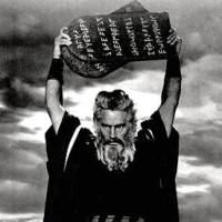 moses460