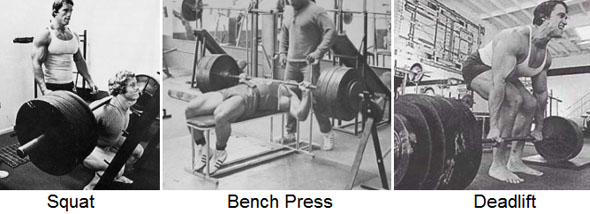 squat bench dead
